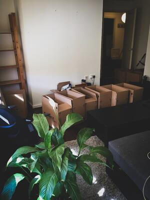 boxes-moving-1764216